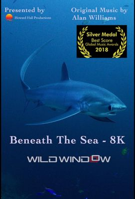 Wild Window: Beneath the Sea (2018)